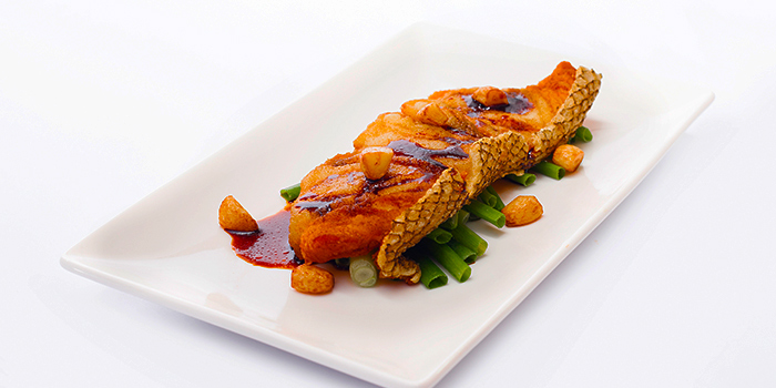 Cod Fish from Dian Xiao Er (Northpoint City) at Northpoint City North Wing in Yishun, Singapore