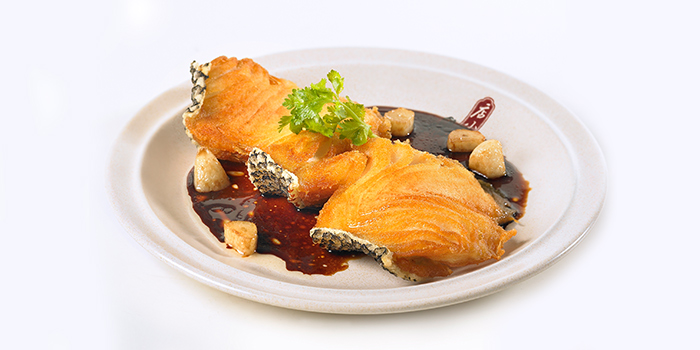 Fried Cod Fish from Dian Xiao Er (Northpoint City) at Northpoint City North Wing in Yishun, Singapore