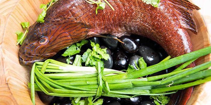 "MonkFish from Dating Fish 鱼你有约""音乐主题餐厅 in Chinatown, Singapore"