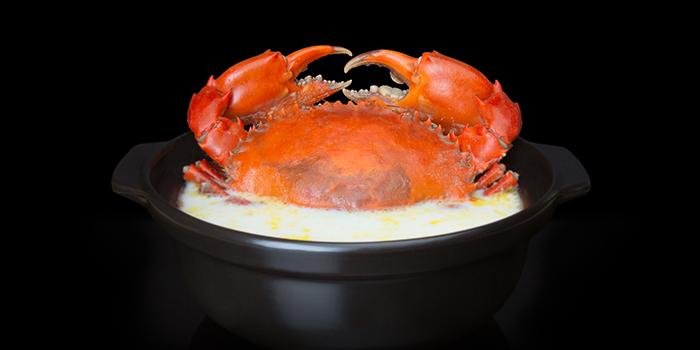 Crab Nabe from Issho Izakaya (Great World City) in River Valley, Singapore