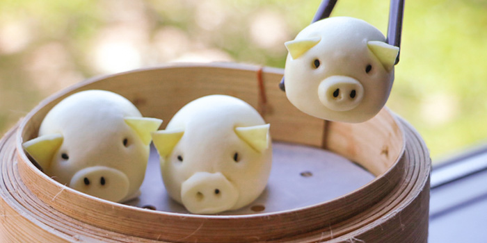 Pig Buns, Nam Fong, Cyberport, Hong Kong