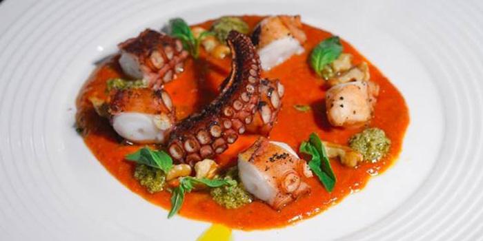 Grilled Octopus from Primi Italian Kitchen and Wine Room at 483/1 Rama III Road Bang Klo, Bangkorlearm Bangkok