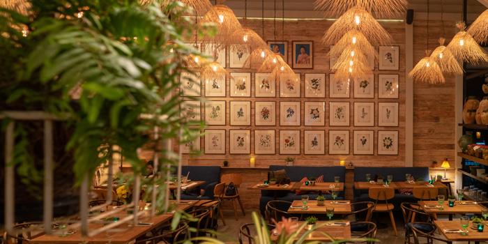 Ambience of Ginger Farm Eatery & Bar at 39 Boulervard Executive Residence Sukhumvit 39 Klong Tan Nuea, Watthana Bangkok