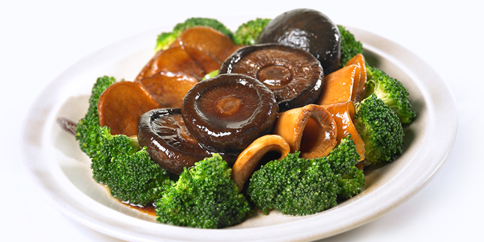 Braised Assorted Mushroom from Dian Xiao Er (VivoCity) in Harbourfront, Singapore