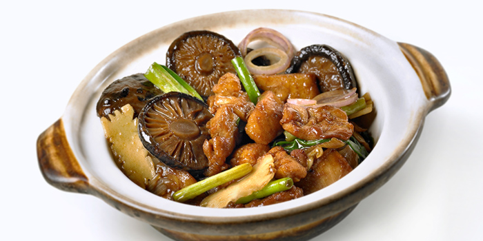 Claypot Ginger Chicken from Dian Xiao Er (Junction 8) in Bishan, Singapore