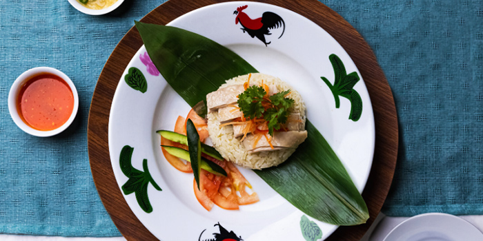 Hainanese Chicken Rice from Atrium Restaurant in Holiday Inn Singapore Atrium in Outram, Singapore