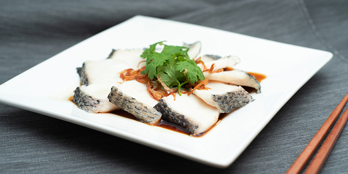 Hong Kong Style Steamed Fish Slices from Dian Xiao Er (Marina Square) in City Hall, Singapore