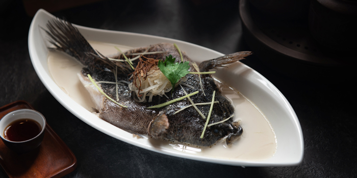 Poached Wild Mable Goby Fish, Celestial Court Chinese Restaurant, Tsim Sha Tsui, Hong Kong