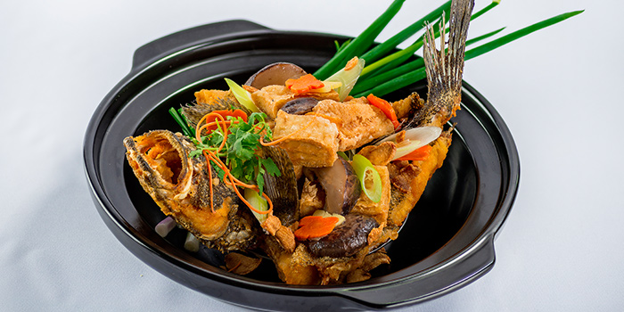Live Fish Stir Fried Gluten Puff & Leek Ginger in Claypot from 566 Seafood & Beer Garden At Mandai Hill in Woodlands, Singapore