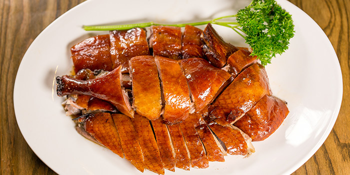 Roast Duck from Char in Jalan Besar, Singapore