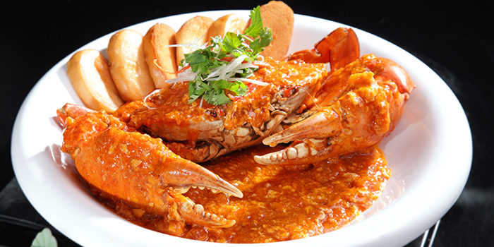 Signature Chilli Crab from G7 Sin Ma Live Seafood and Frog Porridge in Kallang, Singapore