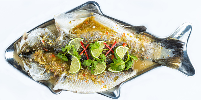 Steamed Seabass with Lime & Garlic from Little Elephant SG Thai Bistro in Tiong Bahru, Singapore