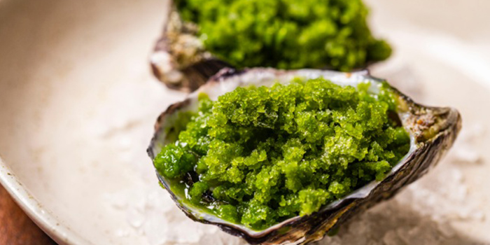 Oysters from Maggie Joan