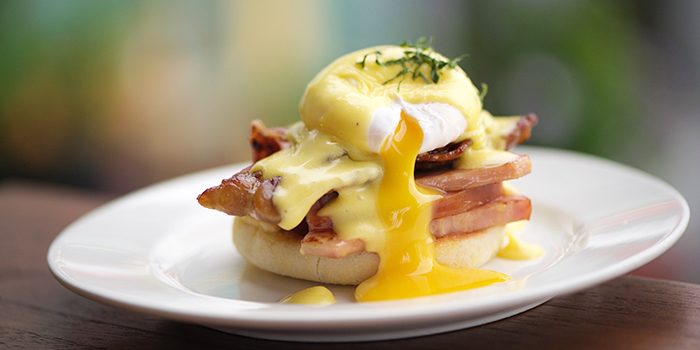 Eggs Benedict from Privé Tiong Bahru at Block 57 in Tiong Bahru, Singapore