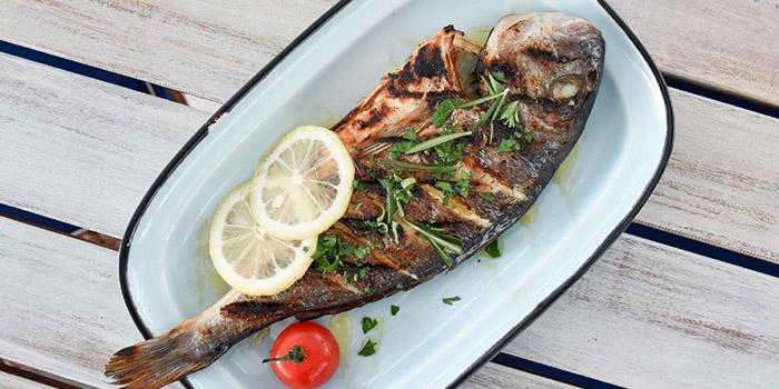 Fish from Zorba The Greek Taverna in Clarke Quay, Singapore