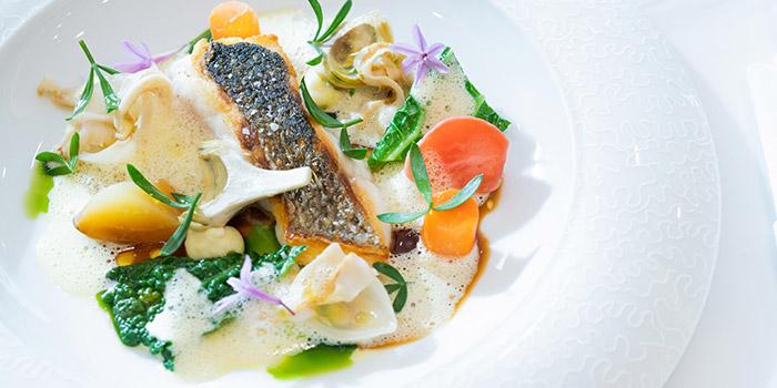 Scottish salmon, ikura, vegetable in aspic, verjus, LE PAN, Kowloon Bay, Hong Kong