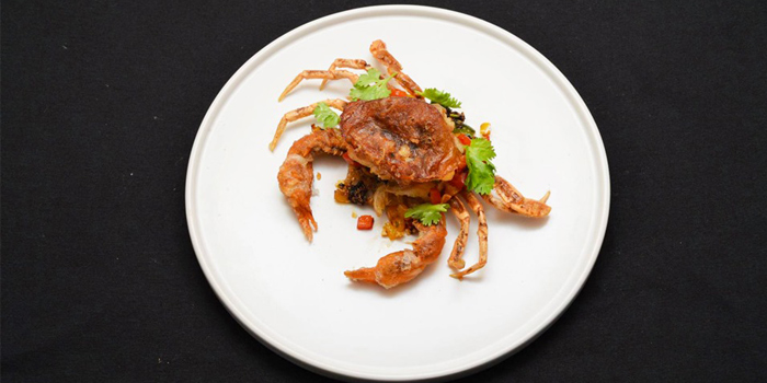 Soft Shell Crab from Hop Pochana at 2/7 Sukhumvit 34 Klongton, Klongtoey Bangkok