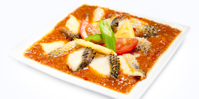 Spicy & Sour Fresh Fish Slices from Dian Xiao Er (Jurong Point) in Jurong, Singapore