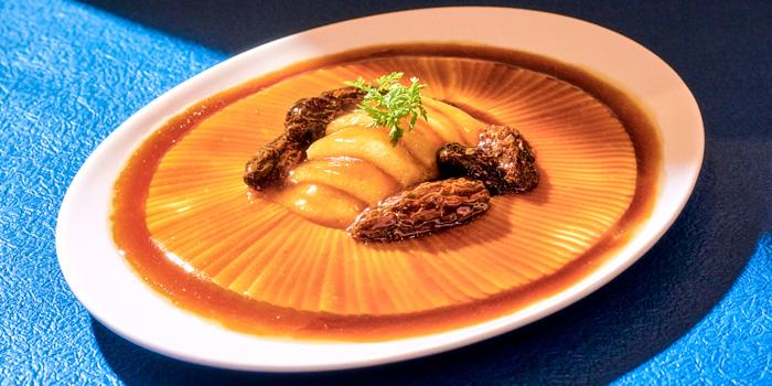 Steamed Bean Curd with Morel Mushroom and  Fresh Bamboo Fungus, Sing Yin Cantonese Dining, Kowloon Station, Hong Kong