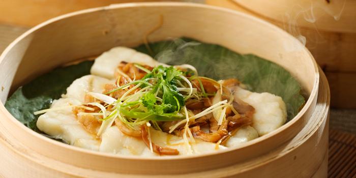 Steamed Grouper Fillets with Shredded Meat and Mushroom, Man Ho Chinese Restaurant, Chek Lap Kok, Hong Kong