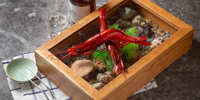 Spanish Red Prawns with Salad, Lava Bar & Restaurant, Prince Edward, Hong Kong