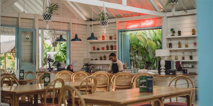 Ambience 2 at Panama Kitchen & Pool, Canggu