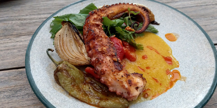 Grilled Octopus from Aesop