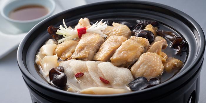 Poached chicken with fish maw, Sun Tung Lok, Tsim Sha Tsui, Hong Kong