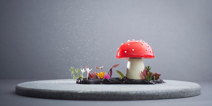 Super Mario Mushroom from Iggy