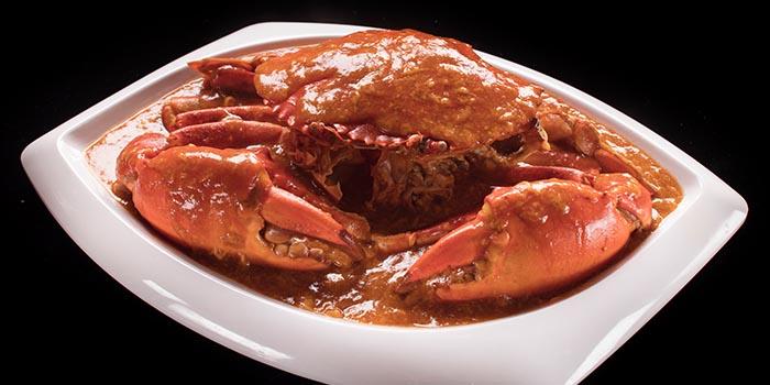 Famous Chilli Crab, Kung Pao, Causeway Bay, Hong Kong