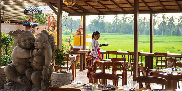 Interior from Bee Cafe, Ubud, Bali