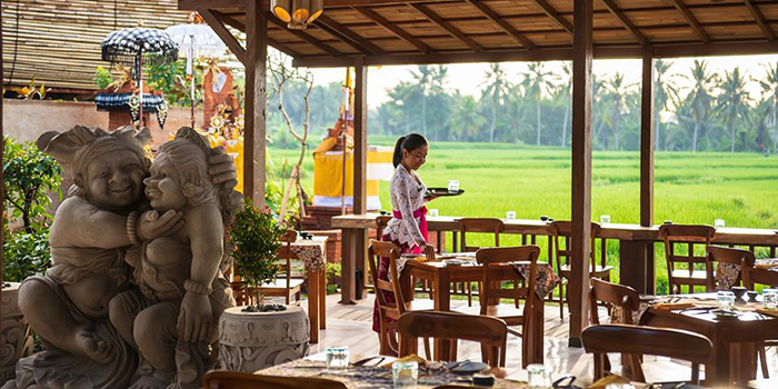 Interior from Bee Cafe, Ubud, Bali