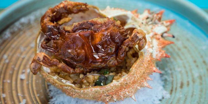 Basque Country Spider Crab from Albricias at Chatrium Residence Sathon, Soi Naradhiwas 24, Bangkok