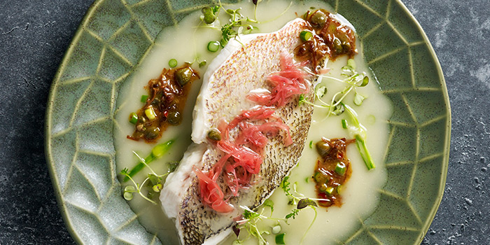 Red Snapper FIllet from  1-V:U – Restaurant and Day Club at The Outpost Hotel in Sentosa, Singapore