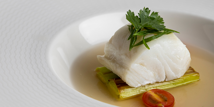 Steam Cod from V Dining at Scotts Square in Orchard, Singapore