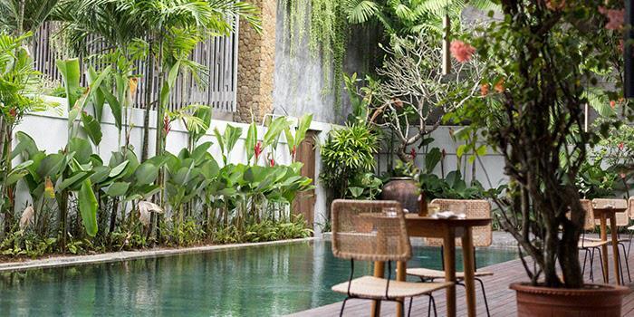 Ninety One Bali