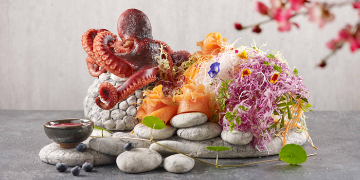 Yusheng (24 Jan to 8 Feb) from Xin Cuisine Chinese Restaurant in Outram, Singapore
