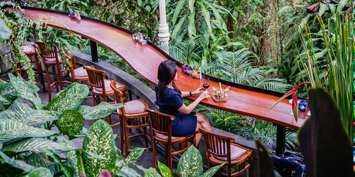Divine bar at bridges Bali
