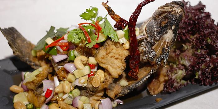 Deep Fried Sea Bass from Kin Kao Mai Thai Restaurant in Punggol, Singapore
