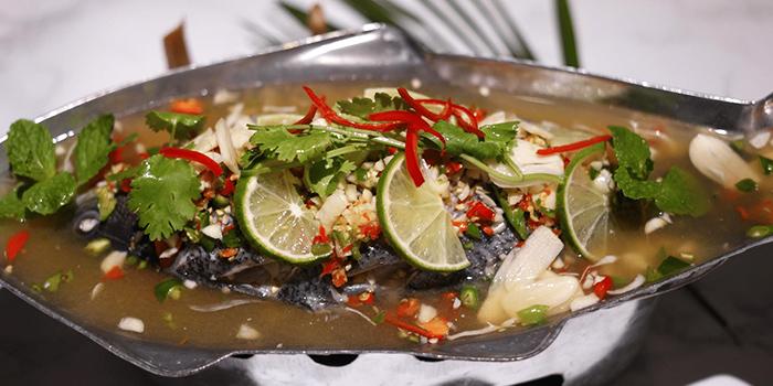 Steamed Seabass from Kin Kao Mai Thai Restaurant in Punggol, Singapore