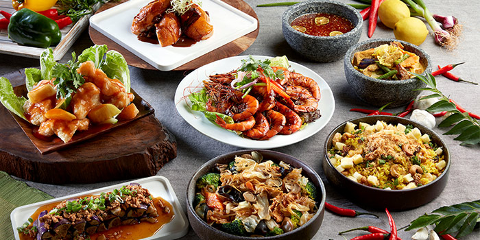 Halal Verified Lunch & Dinner Buffet Highlights from Window on the Park in Holiday Inn Singapore Orchard City Centre in Orchard, Singapore