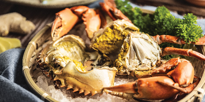 Rock Salt Baked Crab from Captain K Seafood Tower at Midland House in Bugis, Singapore