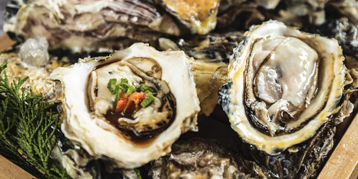 Fresh Raw Oysters from Captain K Seafood Tower at Midland House in Bugis, Singapore