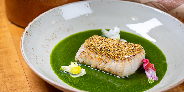 Black Cod from PORTA in Park Hotel Clarke Quay in Robertson Quay, Singapore