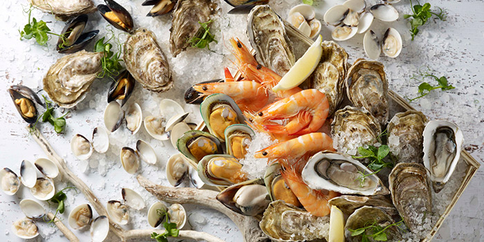 Oyster Buffet from Food Exchange at Novotel Singapore on Stevens in Tanglin, Singapore