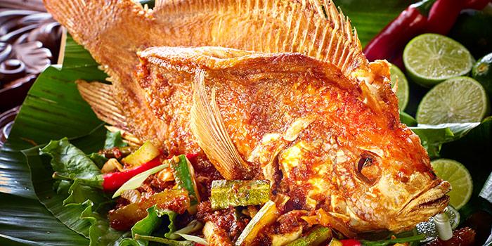 Ikan Nila from Tambuah Mas Indonesian Restaurant (Great World) at Great World City in River Valley, Singapore