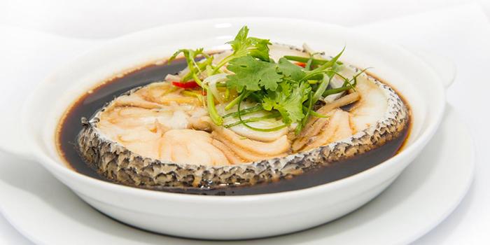 Steam Cod Fish from Founder Bak Kut Teh (Hotel Boss) in Lavender, Singapore