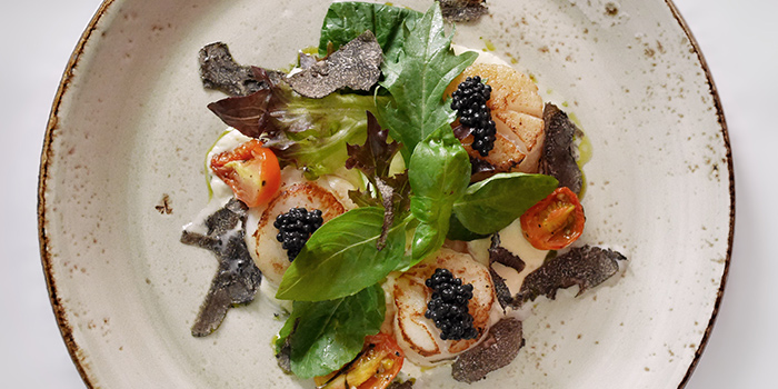 Seared Scallops from Casa Tartufo in River Valley, Singapore