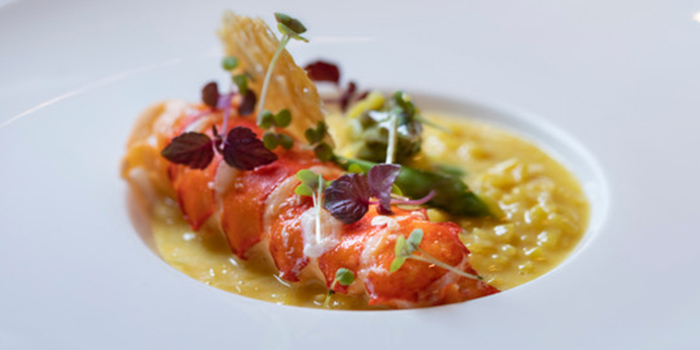 Boston Lobster Risotto from Mag