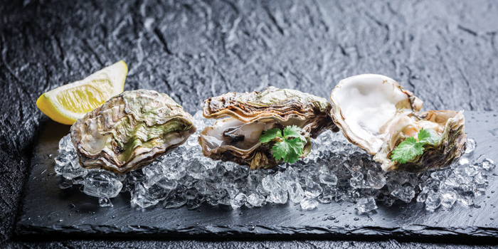 Fresh Oysters, LEVELthirty Lounge & Bar, Shatin, Hong Kong